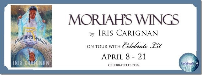moriahs-wings-FB-Banner